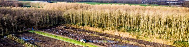 Zwitserleven gaat 2000 bomen aanplanten.