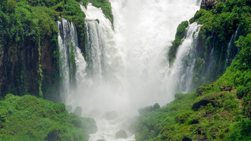 Watervallen en bomen Argentinië Iguazu Falls in regenwoud