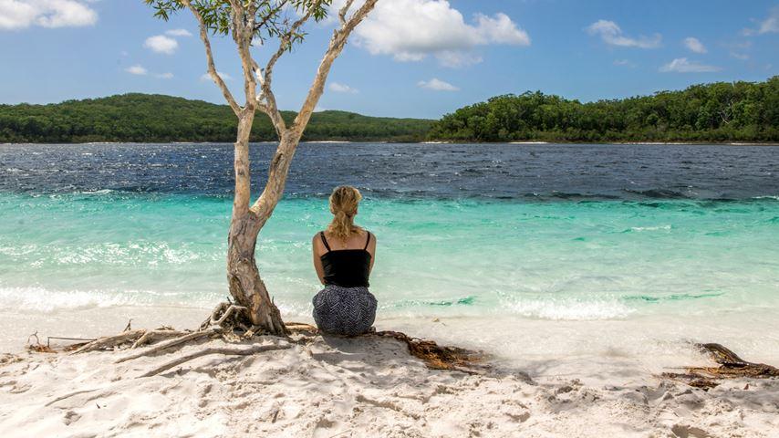 Een vrouw, op de rug gezien, zittend onder een boom, kijkt naar het groen-blauwe meer Lake McKenzie, op Fraser Island in Australië.