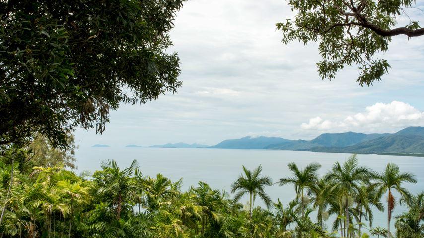 Vanuit een regenwoud zicht op de kustlijn van Port Douglas in Australië. Bergen in de verte en een grijze lucht.