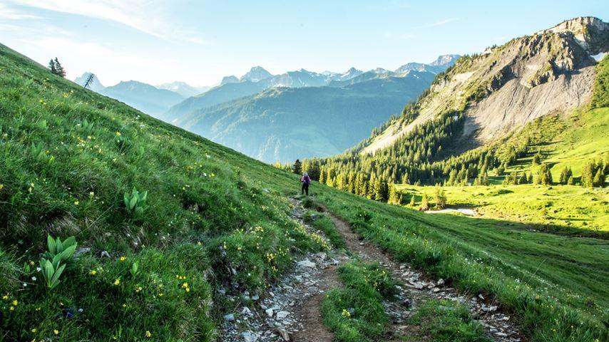Op de achtergrond staat een nevelige berg. In de verte loopt een wandelaar in het groene landschap van het Bregenzerwald in Oostenrijk.