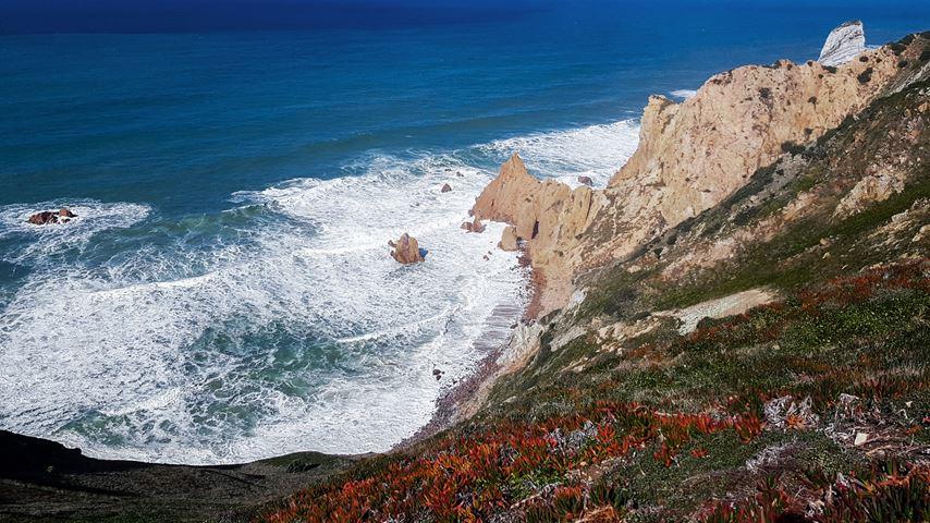 Rotsen en de zee bij Cabo da Roca, Portugal, gezien van bovenaf. Op de rotsen zijn rode bloemen te zien.