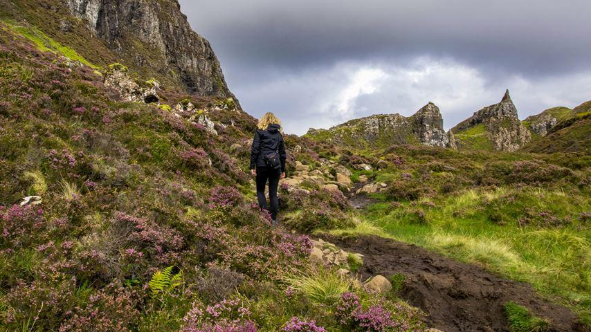 Isle of Skye, Schotland. Een vrouw wandelt tussen paarse bloemen door een heuvelachtig gebied. De lucht is grijs
