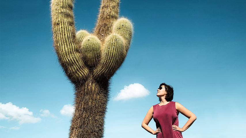 Een vrouw met zonnebril kijkt schuin omhoog naar een grote cactus in de Argentijnse provincie Salta. De lucht is donkerblauw.