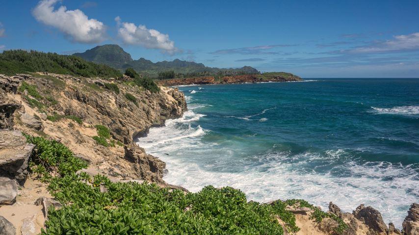 Rotskust van het Hawaïaanse eiland Kauia met planten op de voorgrond. Rotsen en een blauwe zee in het midden. Op de achtergrond bergen.