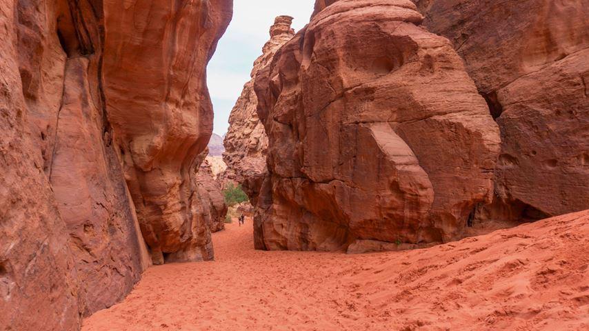 Links en rechts staan grote rode rotsen van de Barragh canyon in de Jordanese Wadi Rum woestijn. In de verte wandelen mensen.