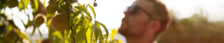 Zwitserleven investeert in groener Nederland